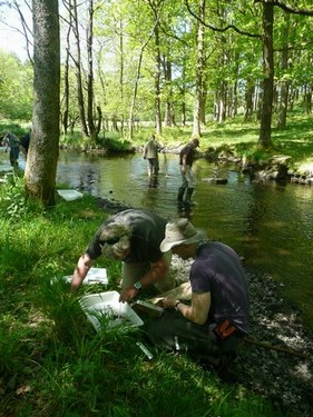 Entomology for anglers attendants collecting samples