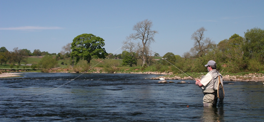Fly fishing the River Eden