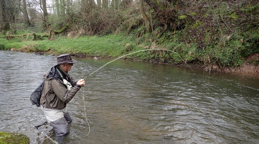 Small stream fly fishing